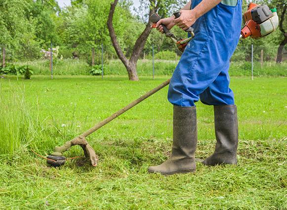 Désherbage pelouse Virton