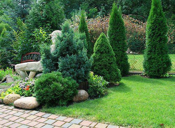 Création jardin bertrix